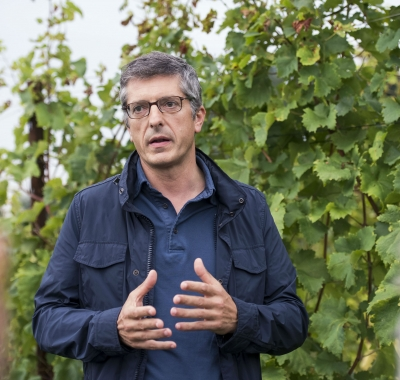Intervista il vino un emozione e chi lo fa sa for Chi fa le leggi in italia